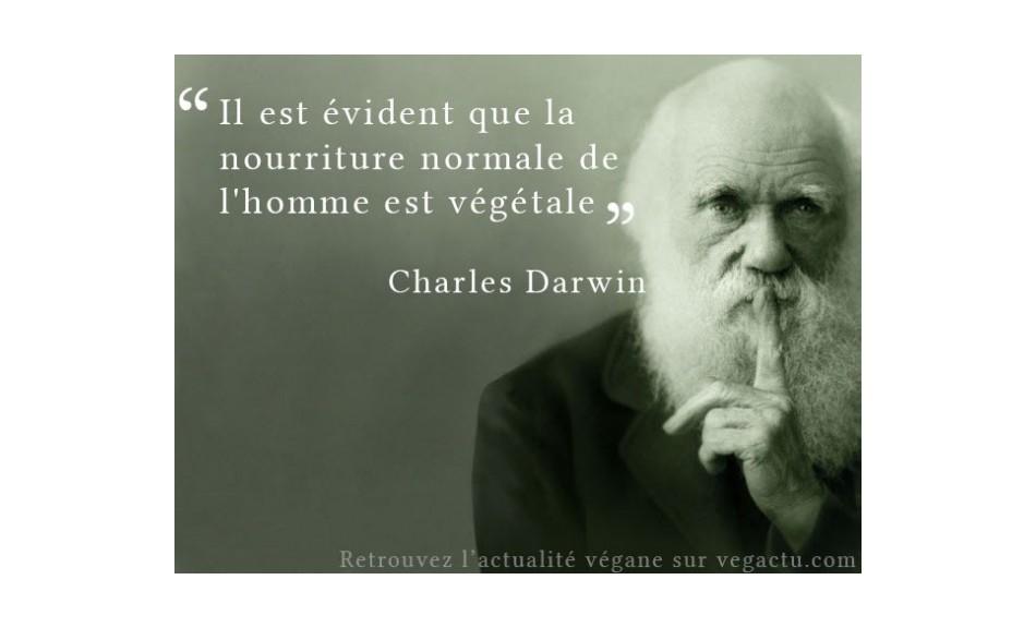 L'Homme est il de base Végétarien ???- preuves en 5 minutes