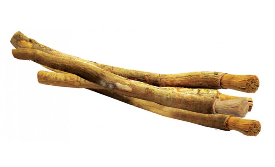 Le Siwak, la nouvelle brosse à dent à la mode (video)