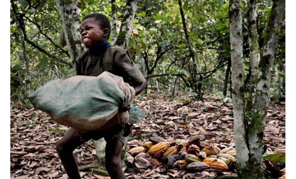 Enfants mis au travail forcé pour votre chocolat