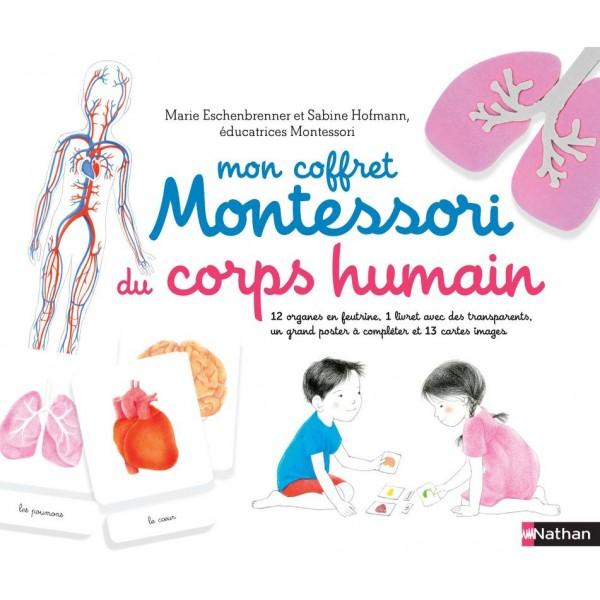 Mon coffret Montessori du corps humain - Nathan