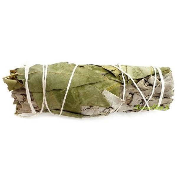 Bâton de Sauge blanche & Eucalyptus - 20g - Fagot