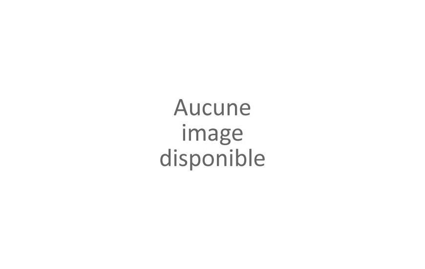 Nez - Gorge - Oreille - Tête